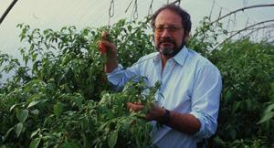 Michael Michaud in the Dorset Naga crop