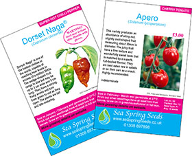 Dorset Naga chillies and Apero tomatoes seed packs